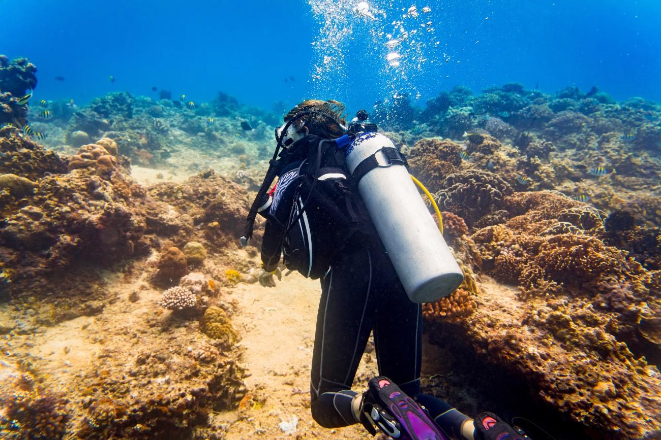 Scuba Diving in Guernsey
